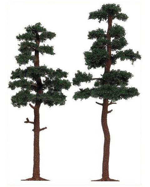 Busch Pines 145-160 , 6142