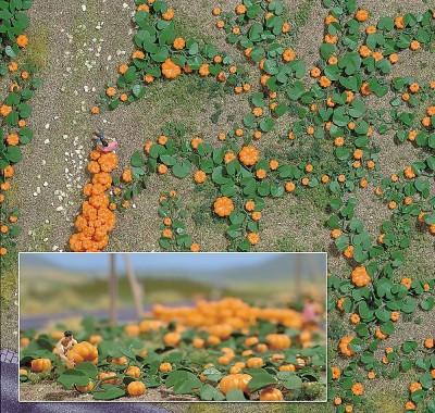 Busch 1201 - Pumpkin Field