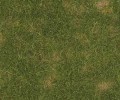 Busch Ground Cover Material: Summer Grass 1303