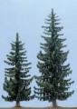 Busch Spruce Trees 55-60 , 6131