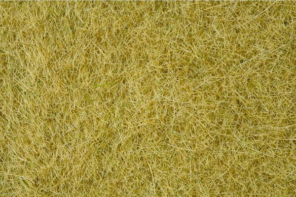 Noch Static Wild Grass , beige, 6 mm 07101