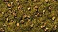 Noch Static Grass Alpine Meadow 08360