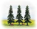 Noch Spruce trees  130 , 25200