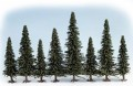 Noch 25 Model Fir Trees,  60-150 , 26320