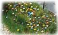 Busch 1229: Summer Flowers