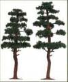 Busch 6141: Pines 130-145