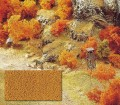 Busch 7324: Lehestik - peenike - kollane-pruun