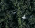 Faller 171509: PREMIUM terrain flocks, medium, forest mixture