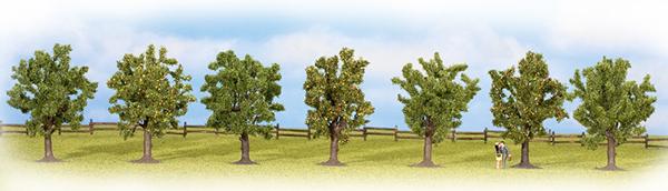 Noch 25090: Puuviljapuud 80