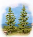 Noch 25830: Spruce trees 110-125